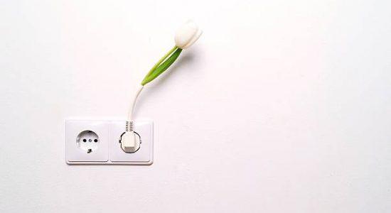 Deux prises électriques avec une fleur artificielle branchée à l'une d'entre elles